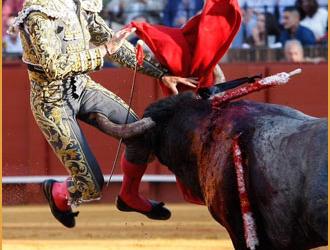 GALERÍA De la corrida de Victorino en Sevilla