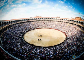 MADRID Crece la afluencia de público