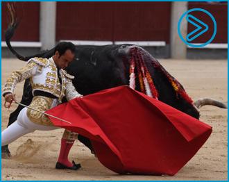 FOTOGALERÍA De la tarde torista de Las Ventas