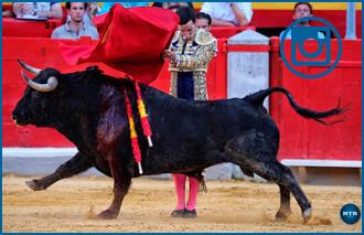 GALERÍA Fotográfica de la corrida de Granada