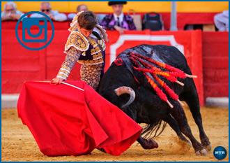 GALERÍA de la corrida de Granada