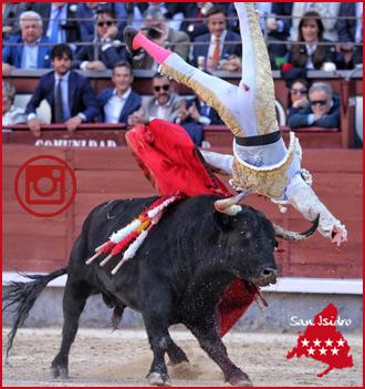 MADRID Galería fotográfica del festejo