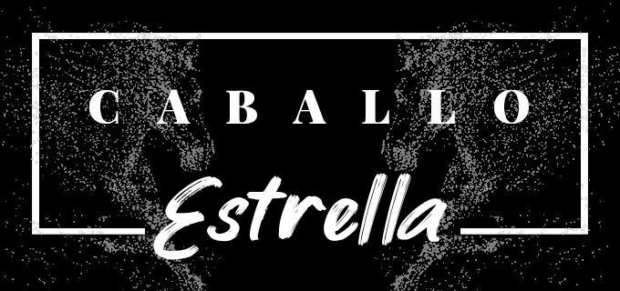 CABALLO ESTRELLA Mundotoro estrena sección