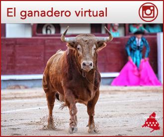 GANADERO VIRTUAL de  Alcurrucén - El Cortijillo
