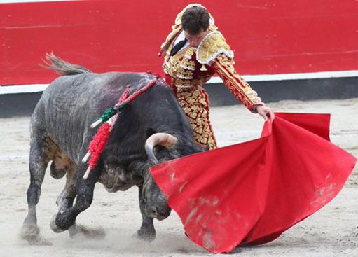 AZPEITIA 'Desorejó' a un gran toro de Ana Romero