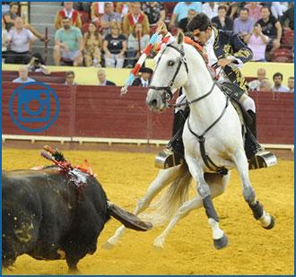 PORTUGAL Triunfal homenaje a las Azores taurinas