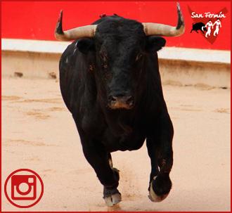 FOTOGALERÍA Del festejo de Pamplona