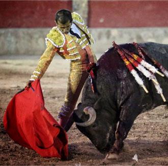 CEDRAL Con un buen toro de Begoña