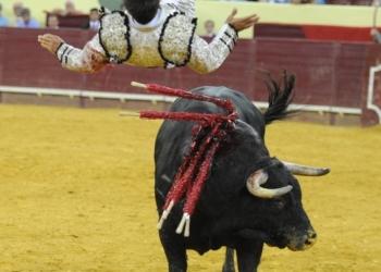 HERIDOS Cogido por el 4º toro en Lisboa