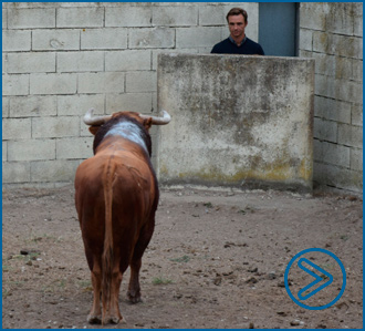 ARLES Toro indultado de Vegahermosa