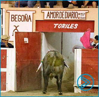 CIUDAD JUÁREZ Soberbia corrida de A. Bailleres