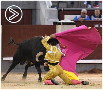 MADRID Herido el banderillero Caco Ramos