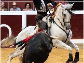 FOTOGALERÍA De los rejones de Logroño