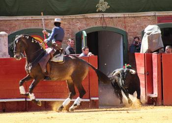 ESPECIAL REJONES - Sergio Galán Valencia