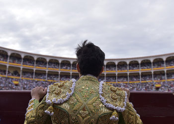 Torero público Madrid