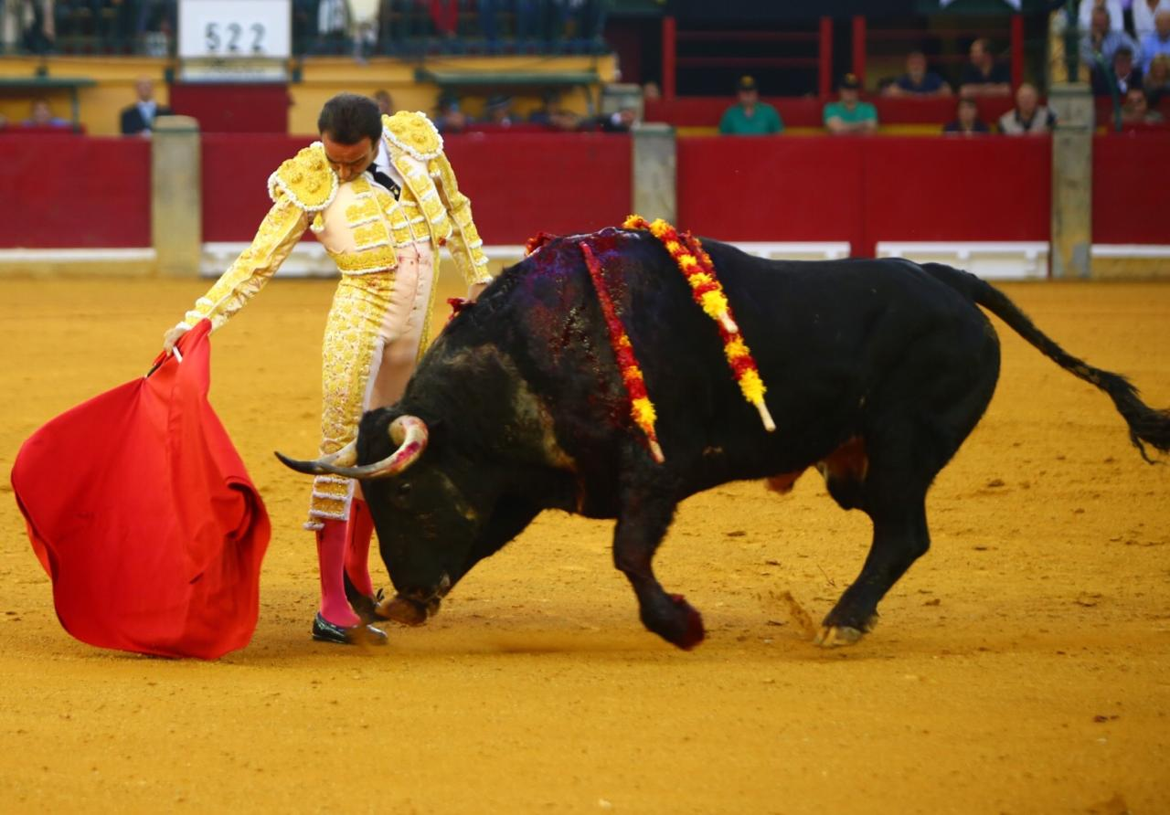ZARAGOZA Los toros, de Juan Pedro Domecq