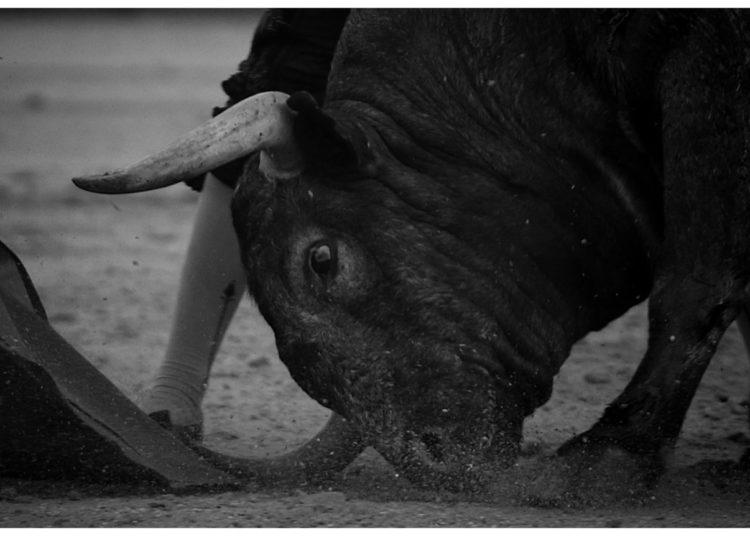 Cobradiezmos toro de Victorino 13 de abril de 2016