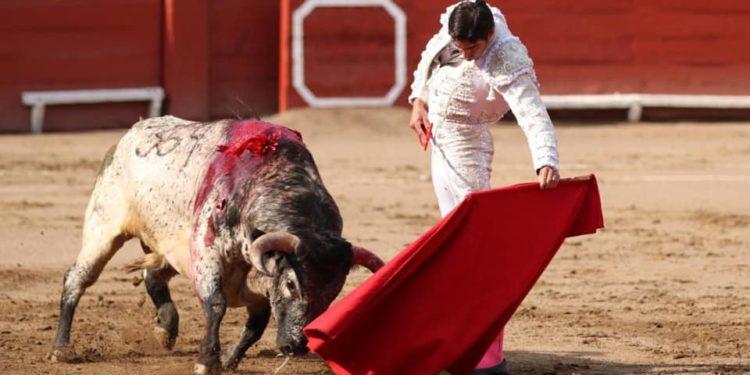 Miguel Ángel Perera Lima 10 de noviembre2019