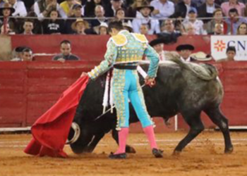 Joselito Adame, la raza de figura