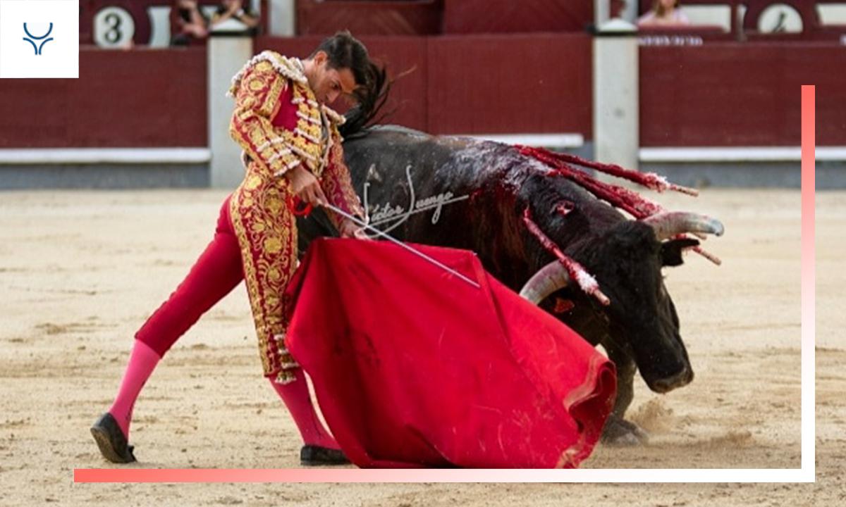Especial novilleros 2019 - Carlos Aranda