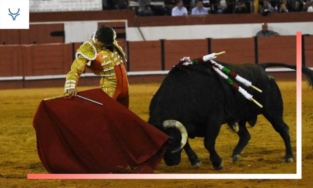 Especial Novilleros de Diego Peseiro - Temporada 2019