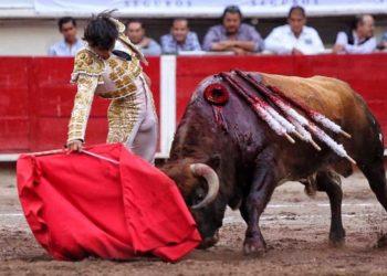 Oreja de Luis David Aguascalientes 20/11/19