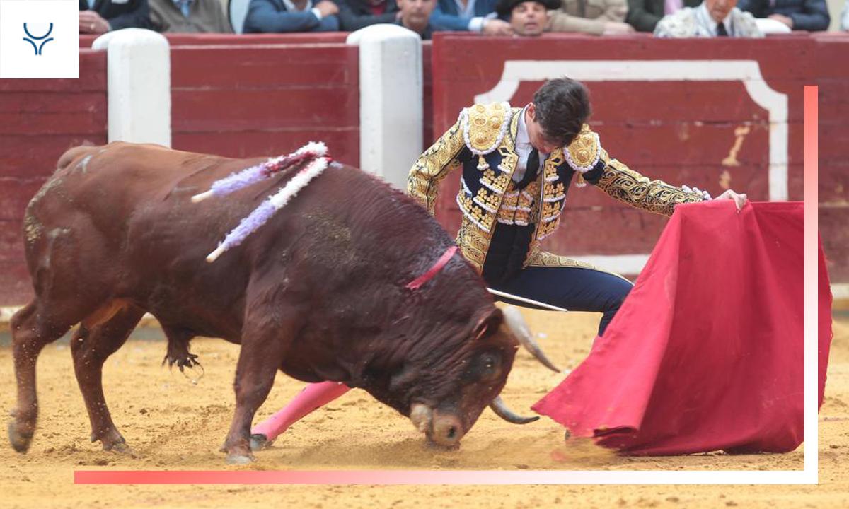 Especial novilleros 2019 - Marcos