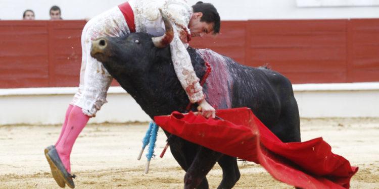 Montero Saint Sever 11/11/19