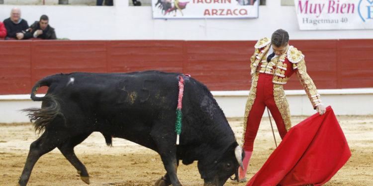 Alejandro Mora Saint Sever 11/11/19