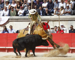 Indulto del toro de Cortés en Nimes
