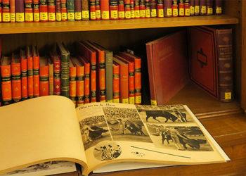 biblioteca carriquiri las ventas