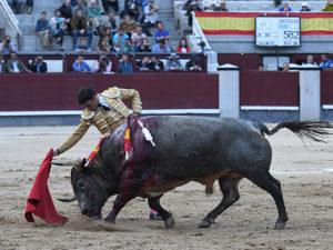 Sergio Serrano Madrid 2019 Saltillo