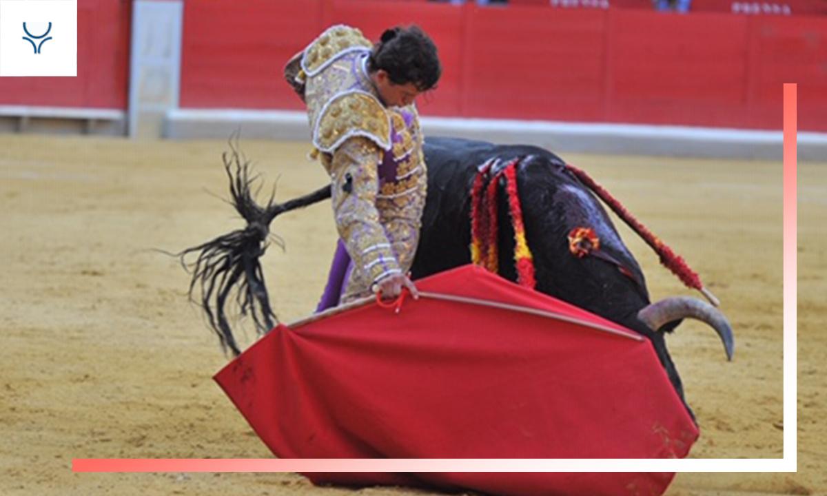 Especial Novilleros 2019 – Miguel Aguilar