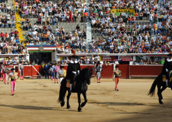 Plaza toros Cali Passeillo
