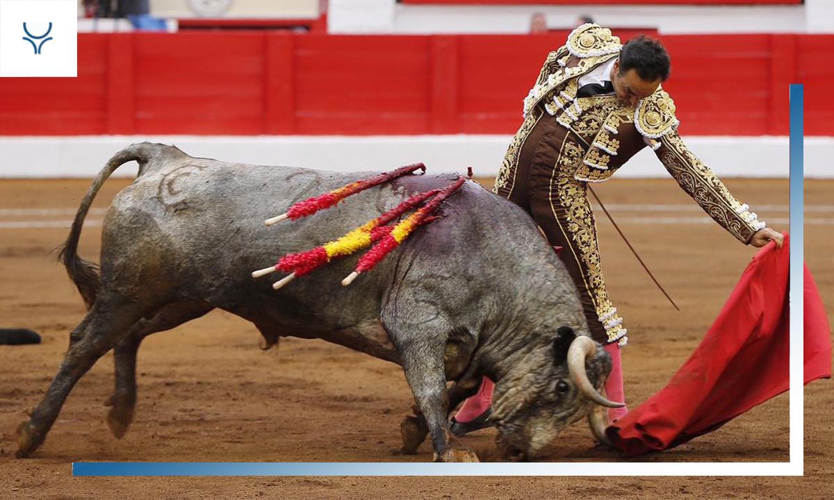Especial Matador de El Cid - Temporada 2019