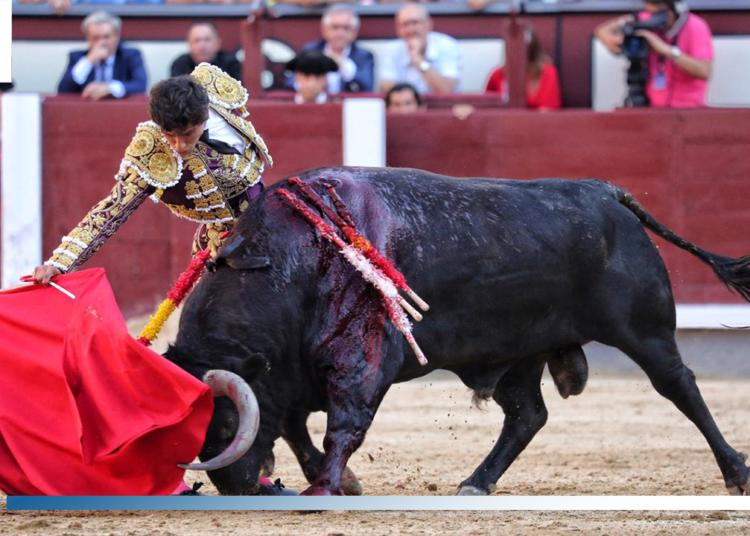 Especial Matadores de Luis David Adame - Temporada 2019