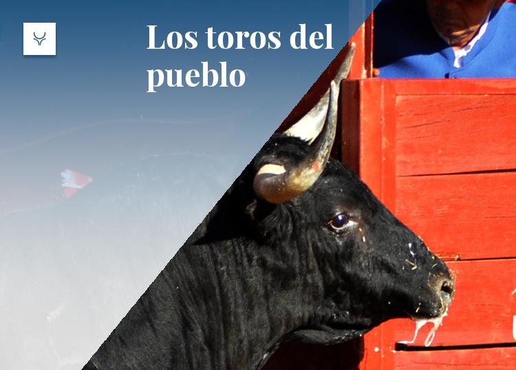 Los toros del pueblo Cenicientos