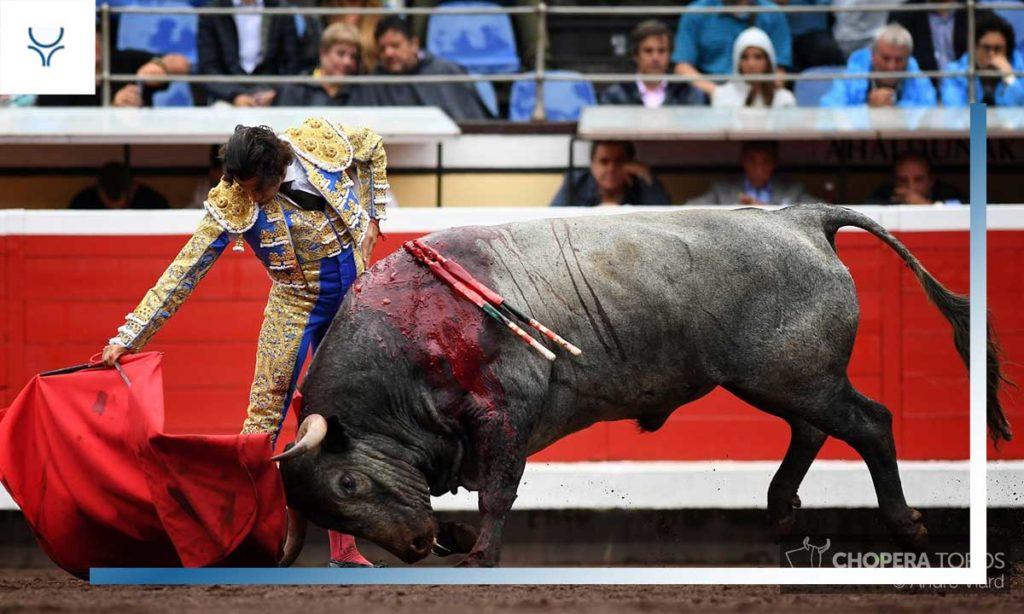 Especial matadores 2019 curro diaz