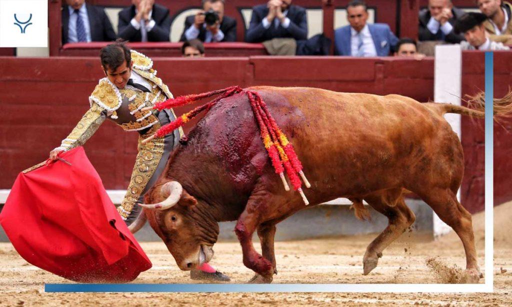 Especial matadores 2019 joselito adame