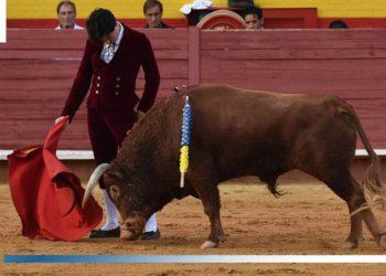 Especial matadores 2019 Toñete