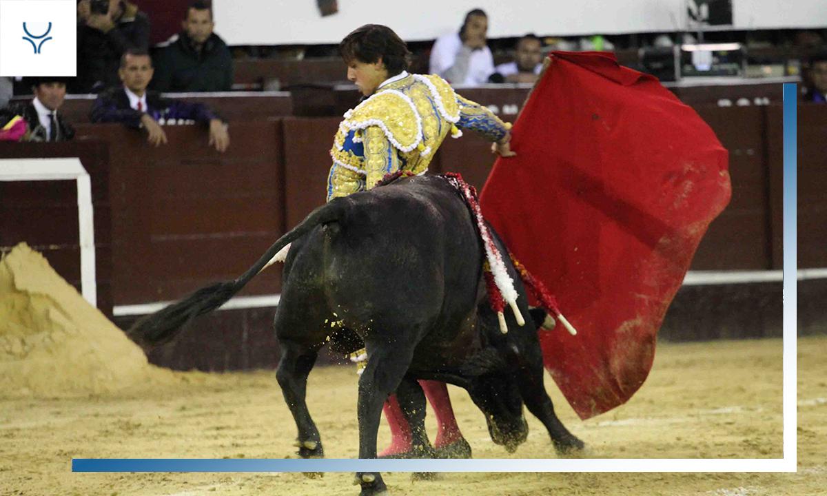 Especial Matador de Roca Rey - Temporada 2019