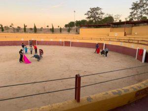 Escuela de Tauromaquia de Toledo 'Domingo Ortega'