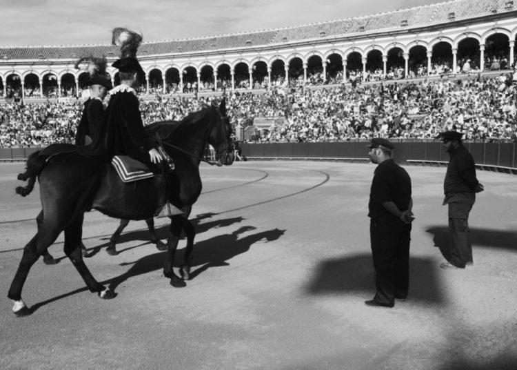 Plaza de toros de la Maestranza de Sevilla