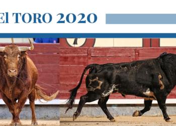 El toro 2020 - Jandilla y Vehagermosa
