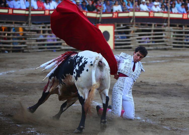 Leo Valadez La Petatera
