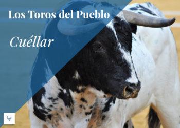 Los toros del pueblo, Cuéllar