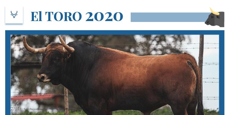 El 2020 de Murteira Grave: una camada con acento español