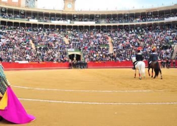 Valencia carteles Feria de Fallas 2020