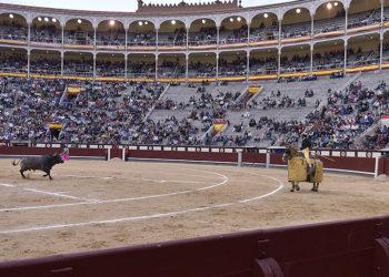 Pallarés: Madrid como objetivo