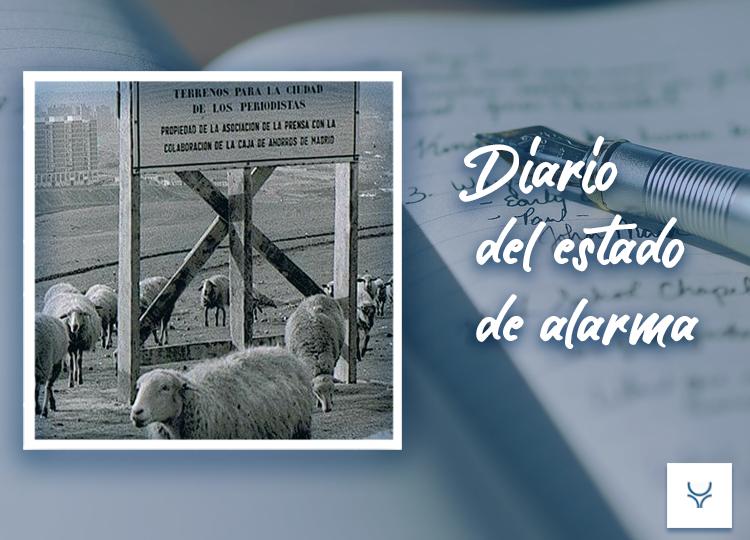 Diario del Estado de Alarma día 5 - Un perro de caza sin nada que cazar